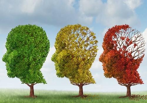 demensiya nedir